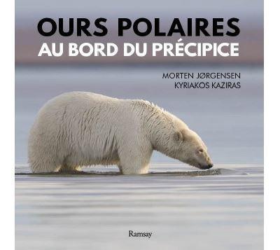 Ours polaire au bors du précipice