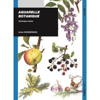 Aquarelle Botanique Technique Seche Les Fleurs Broche Ann