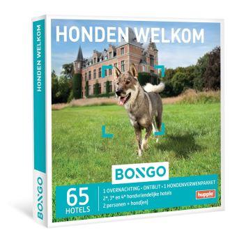 Bongo Honden Welkom