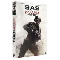 Section d'assaut DVD