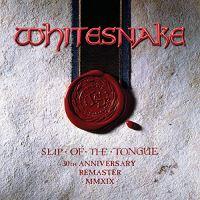 Slip Of The Tongue 30Th Anniversary