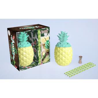 l 39 ananas cocktails coffret livre avec accessoires boites et accessoires collectif achat. Black Bedroom Furniture Sets. Home Design Ideas