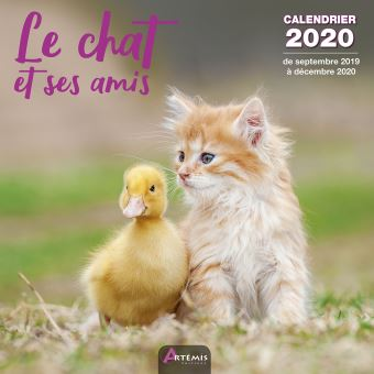 Calendrier Chat 2020.Calendrier Chat Et Ses Amis 2020
