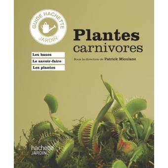 plante carnivore livraison