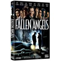 Coffret Fallen Angels L'intégrale DVD