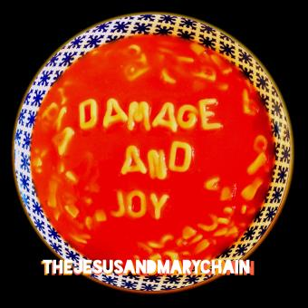 Damage and Joy