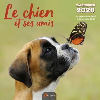 Calendrier 2020 Animaux.Calendrier Chien Et Ses Amis 2020