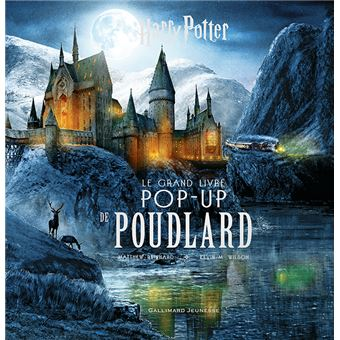 Harry Potter Le Grand Livre Pop Up De Poudlard