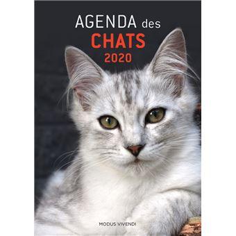 Agenda des chats 2020