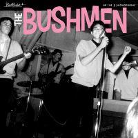 Bushmen Vinyle Coloré