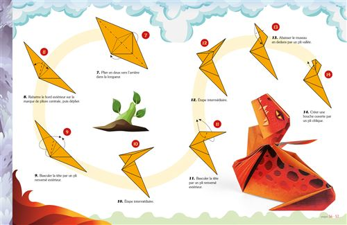 Animaux Fantastiques En Origami Facile Et Pour Les Enfants Boite Ou Accessoire Pasquale D Auria Achat Livre Fnac