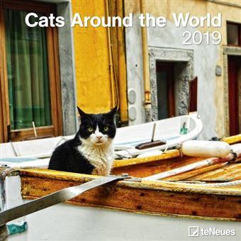 2019 Cats Around the World