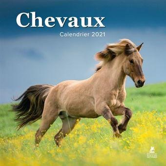 Chevaux   Calendrier 2021   broché   Collectif   Achat Livre   fnac