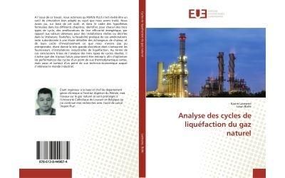 Analyse des cycles de liquéfaction du gaz naturel