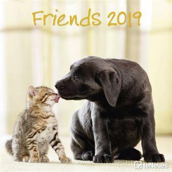 Kittens & Puppies Friends Kalender 2019