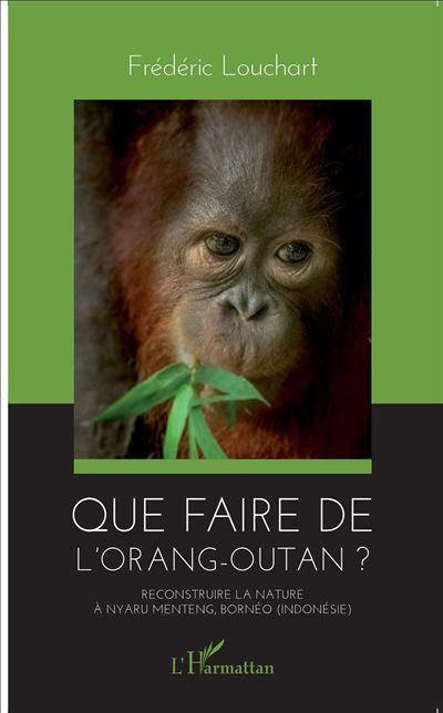 Que faire de l'orang-outan ?