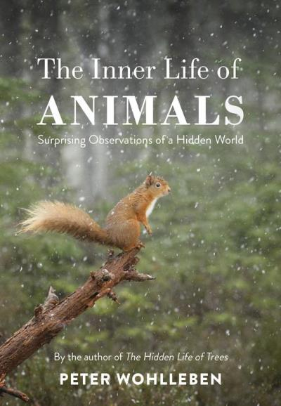 The Inner Life of Animals - Surprising Observations of a Hidden World - 9781473547971 - 9,49 €