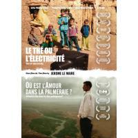Le thé ou l'électricité - Où est l'amour dans la Palmeraie DVD