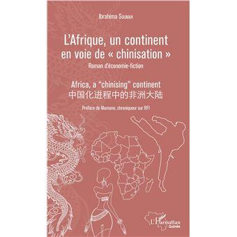 L'afrique un continent en voie de chinisation roman d'econom