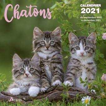 Calendrier Chatons 2021   broché   Collectif   Achat Livre | fnac