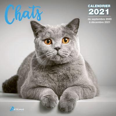 Calendrier Chats 2021   broché   Collectif   Achat Livre | fnac