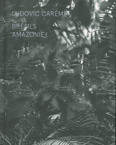 Brésils - Amazonie