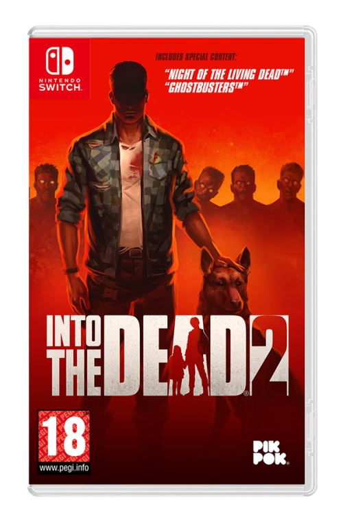 Into the Dead 2 Nintendo Switch