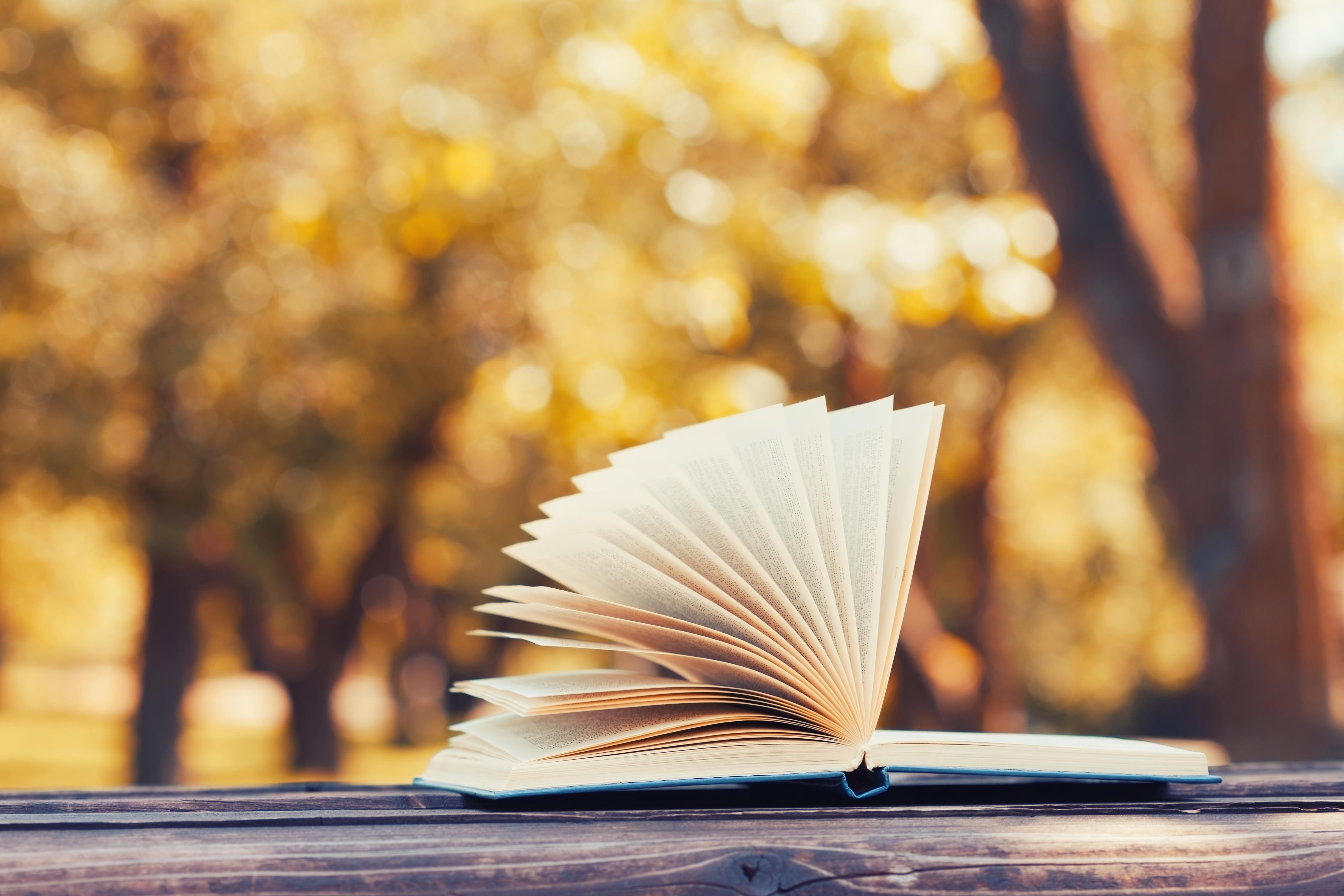 Livros: 7 autores que estão a marcar outubro
