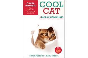 gato_cool