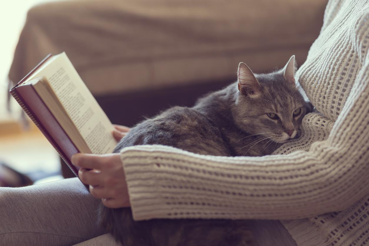 10 livros para quem tem amigos de quatro patas