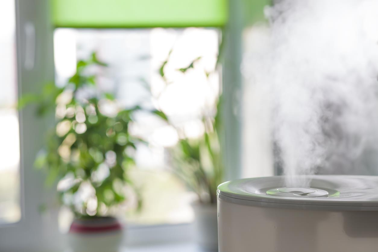 Humidificadores, desumidificadores ou purificadores? A saúde começa no ar que respiras