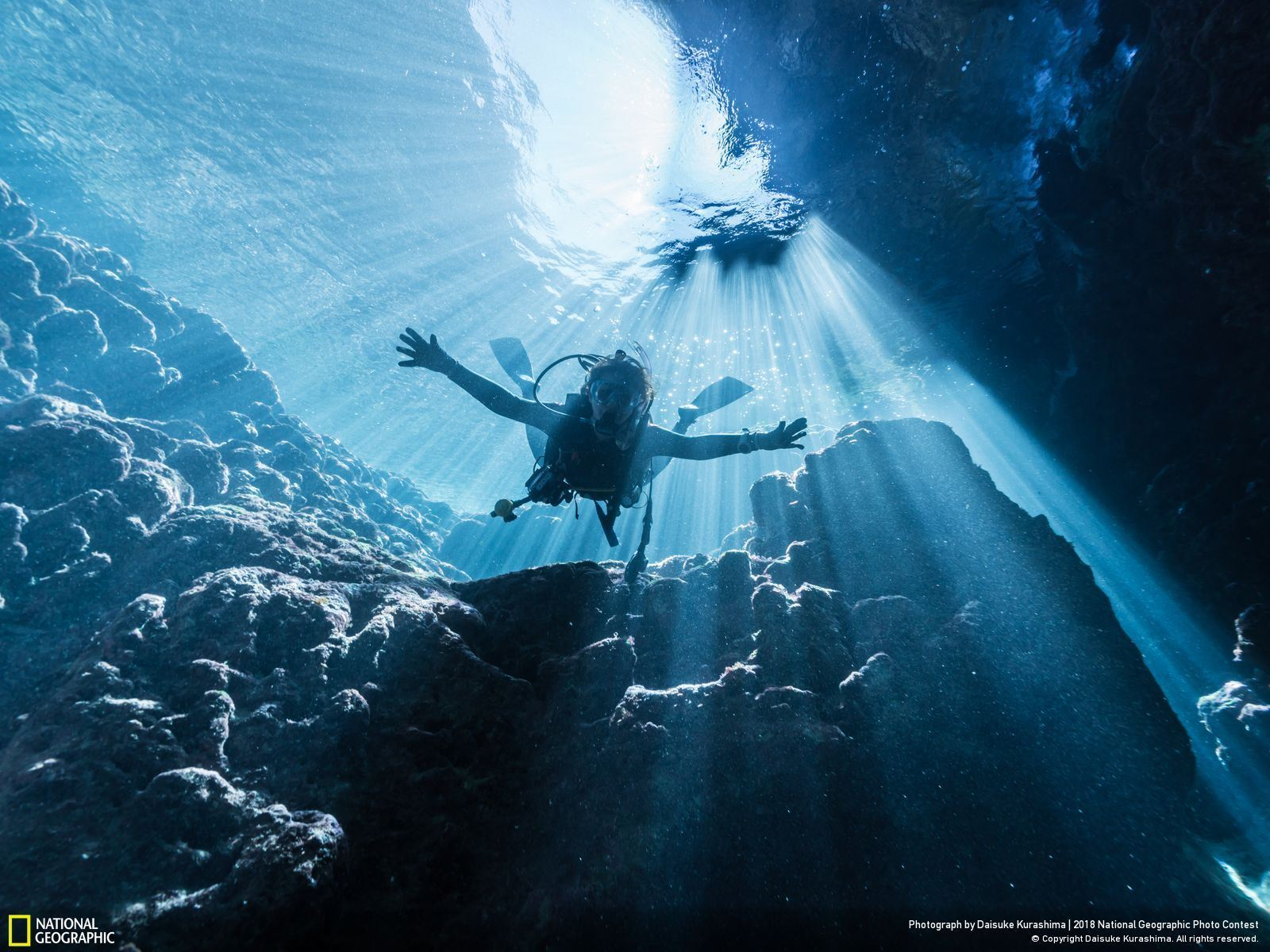 In the Japanese Cenote