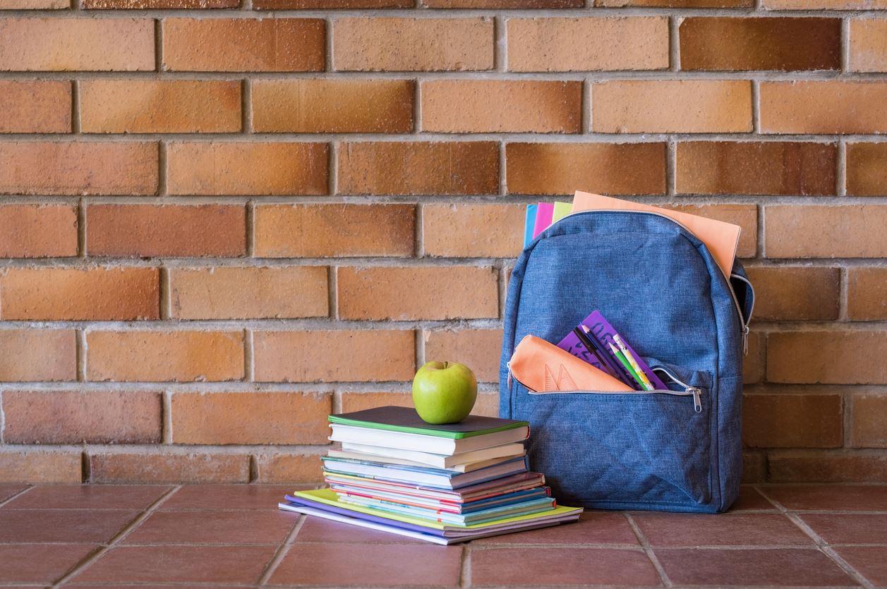 Vouchers MEGA: o que precisas de saber para receber manuais escolares gratuitos