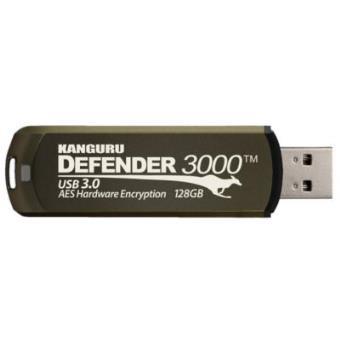 Kanguru Defender 3000, 4GB