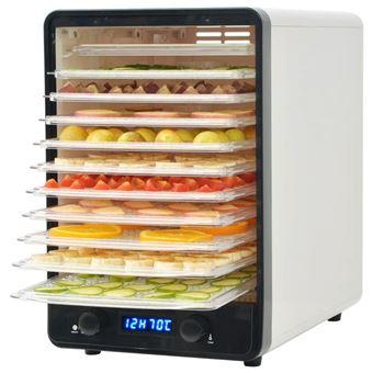 Desidratador de Alimentos vidaXL com 10 bandejas 550W branco