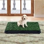 Sanita com Tabuleiro para Cães PawHut | Plástico | 51x63x6 cm - Verde e Preto