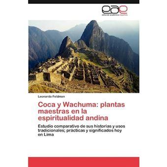Coca y Wachuma - Plantas Maestras En La Espiritualidad Andina - Paperback / softback - 2012