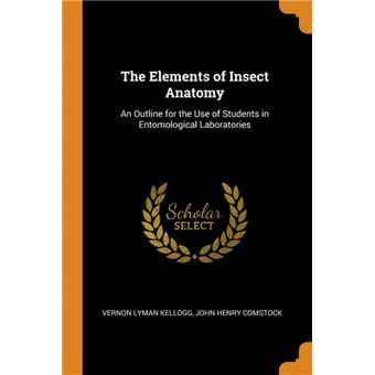 the Elements Of Insect Anatomy Paperback -