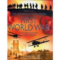 Usborne introduction to the first w