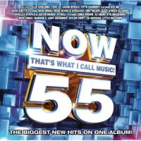 Now That's What I Call Music! Vol 55 - CD