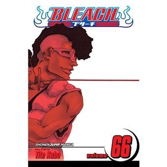 Bleach - Book 66