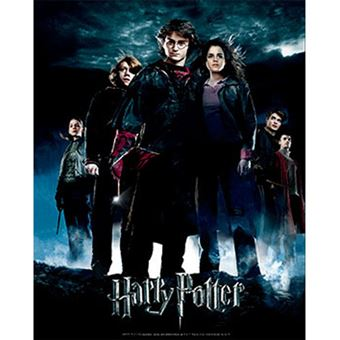 Poster 3D Harry Potter: Globet of Fire
