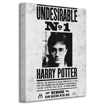 Poster Harry Potter: Undesirable nº 1