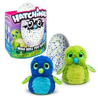 Hatchimals Draggles Verde ou Azul – Concentra