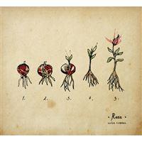 Rosa - CD