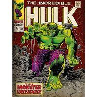 Tela com Moldura Hulk