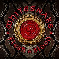 Flesh & Blood - CD + DVD