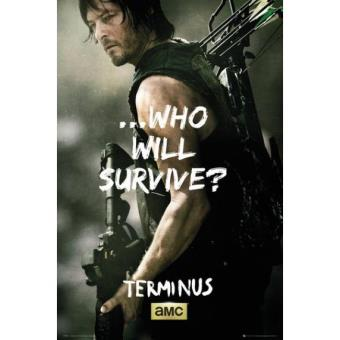Poster The Walking Dead Daryl Survive