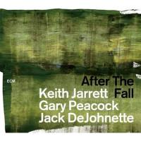 After the Fall - 2CD