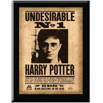 Placa Harry Potter Undesirable No.1